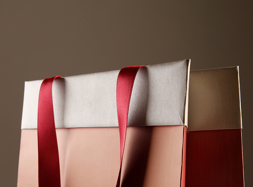 Paper bag with outer envelope